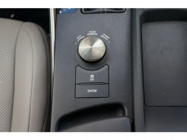2015 Lexus IS - Image 25